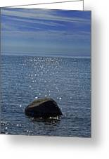 Sunlight Sparkling On The Water At Sturgeon Point Greeting Card