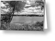 Sunny Day At The Lake Greeting Card