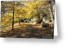 Sunny Day In The Autumn Park Greeting Card