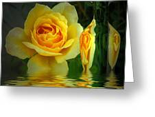 Sunny Delight And Vase 2 Greeting Card