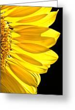Sunny Glow Greeting Card