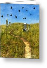 Sunny Graveyard With Birds Greeting Card