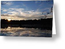 Sunrise At The Pond Greeting Card