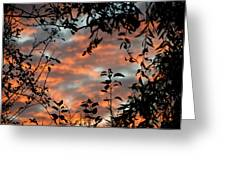 Sunrise Leaves Greeting Card