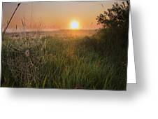 Sunrise On A Dew-covered Cattle Pasture Greeting Card