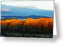 Sunrise On Trees Greeting Card