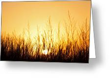 Sunrise Over Nachusa Grasslands Greeting Card