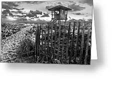 Sunrise Sentinel In Black And White Greeting Card