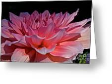Sunrise Shades Of Pink Greeting Card