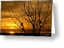 Sunrise Song Greeting Card