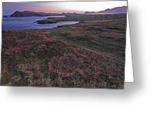 Sunrise View Of Clogher Beach Greeting Card