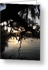 Sunset At Blue Springs Greeting Card