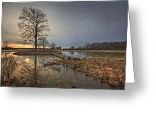 Sunset At Timber Banks Greeting Card
