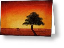 Sunset Bench Greeting Card