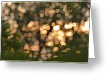 Sunset Bokeh  Greeting Card