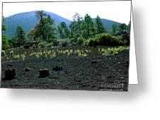 Sunset Crater Arizona Greeting Card
