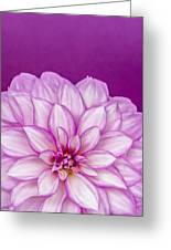 Sunset Dahlia 3 Greeting Card