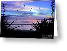 Sunset Down Under Greeting Card
