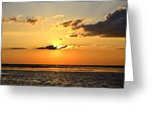 Sunset Flight Greeting Card