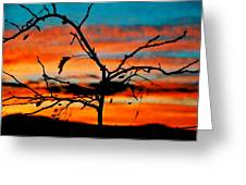 Sunset In Nevada Greeting Card