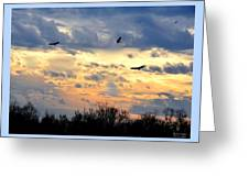 Sunset Of The Hawks Greeting Card