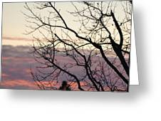 Sunset Of Winter's Beauty Greeting Card by Naomi Berhane