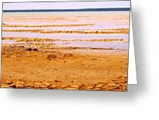 Sunset On The Mud Flats Greeting Card
