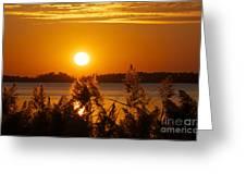 Sunset On White Lake Greeting Card