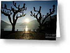 Sunset Over A Lake With Trees Greeting Card