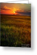 Sunset Over Field Greeting Card