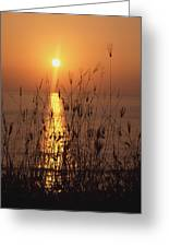 Sunset Over Pacific Greeting Card