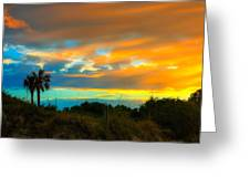 Sunset Palm Folly Beach  Greeting Card