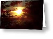 Sunset Peaking Through The Trees Greeting Card