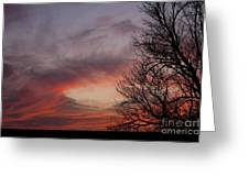 Sunset With Trees Greeting Card