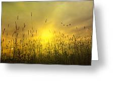 Sunsets To Remember Greeting Card by Tom York Images