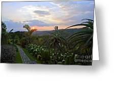 Sunsetting Over Costa Rica Greeting Card