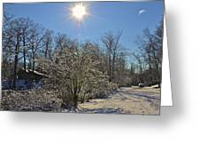 Sunshine In The Snow Greeting Card