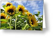 Sunshine Lolipops Greeting Card