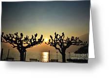 Sunshine Over A Lake Greeting Card