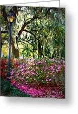 Sunshine Through Savannah Park Trees Greeting Card