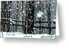 Supersized Snowflakes Greeting Card