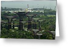 Supertrees At The Gardens By The Bay In Singapore Greeting Card