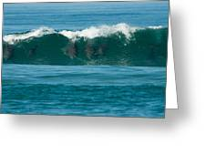 Surfing Dolphins 2 Greeting Card