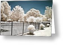 Surreal Michigan Infrared Nature - Dreamy Color Infrared Nature Fence Landscape Michigan Infrared Greeting Card