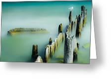 Surreal Sea Gull Greeting Card