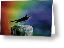Surrounded By Color Greeting Card