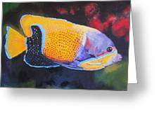 Sutton Fish Greeting Card by Terry Gill