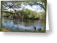 Suwannee River Greeting Card