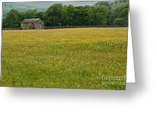 Swaledale Buttercup Meadow Greeting Card