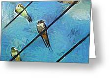 Swallows Goes To South Greeting Card